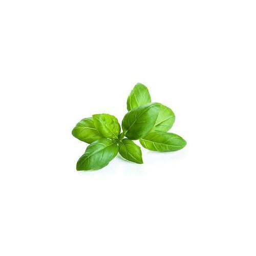 Aceite esencial de Albahaca Bio